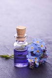 Aromatherapy essence Stock Photography