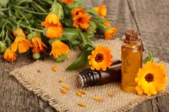 Aromatherapy essential oil with fresh marigold flowers on old wooden background. Calendula oil Royalty Free Stock Image