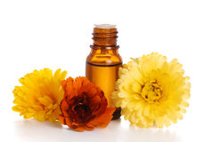 Aromatherapy essential oil  with marigold. Flowers, isolated white background Stock Images