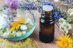 Aromatherapy with essential oils from citrus herbs and flowers. Aromatherapy with essential oils from citrus herbs and flowers on a wooden table royalty free stock photography
