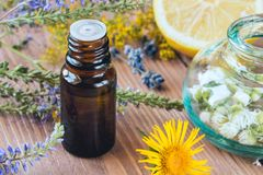 Aromatherapy with essential oils from citrus herbs and flowers. Aromatherapy with essential oils from citrus herbs and flowers on a wooden table royalty free stock photos