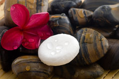 Aromatherapy et relaxation de station thermale photo libre de droits