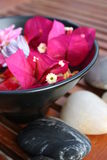 Aromatherapy Flower Bowl Royalty Free Stock Photography