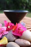 Aromatherapy Flower Bowl Stock Photo