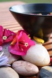 Aromatherapy Flower Bowl Royalty Free Stock Images