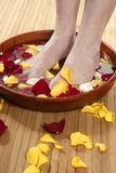 Aromatherapy, flowers feet bath, rose petal Royalty Free Stock Photo