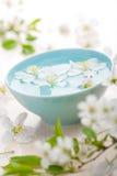 aromatherapy flowers spa άνοιξη Στοκ εικόνες με δικαίωμα ελεύθερης χρήσης