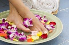 aromatherapy fot brunnsortvatten Royaltyfria Bilder