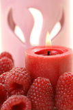 Aromatherapy framboos royalty-vrije stock foto