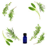 Aromatherapy Herb Selection. Herb leaf selection of lavender, sage, rosemary and thyme in an abstract circular design with blue essential oil glass bottle, over stock image