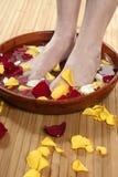 Aromatherapy, het bad van bloemenvoeten, nam bloemblaadje toe Royalty-vrije Stock Foto