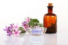 Aromatherapy i masażu olej Zdjęcia Royalty Free