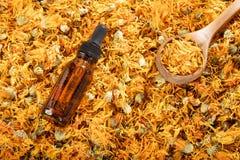 Aromatherapy istotny olej z nagietkiem kwitnie - Calendula officinalis Tekst przestrzeń zdjęcie stock