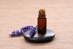 aromatherapy lavender Στοκ Εικόνες