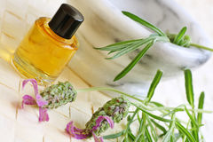 Aromatherapy lavender oils Stock Image
