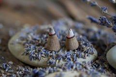 Aromatherapy med lavendel - materielfoto royaltyfri fotografi