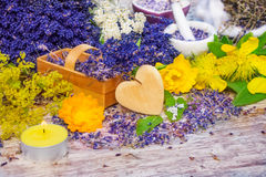 Aromatherapy, Medicinal herbs Royalty Free Stock Photos