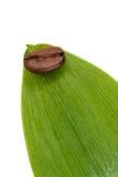 Aromatherapy mit Kaffee Lizenzfreie Stockbilder