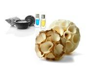 Aromatherapy Montage Royalty Free Stock Photos