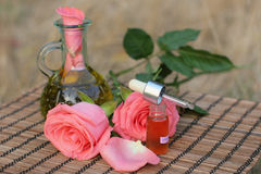 aromatherapy nödvändig olja royaltyfri fotografi