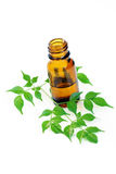 Aromatherapy oil. Bottle of aromatherapy oil and fresh green leaves - beauty treatment Stock Photo