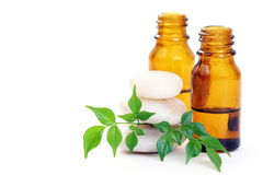 Aromatherapy oil. Bottle of aromatherapy oil and fresh green leaves - beauty treatment Stock Images
