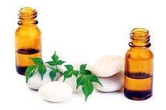 Aromatherapy oil Royalty Free Stock Photo