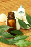 Aromatherapy oil. Bottle of aromatherapy oil and fresh green leaves Royalty Free Stock Images