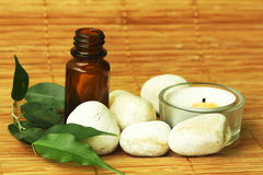 Aromatherapy oil Stock Image