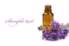 Aromatherapy oil. And lavender flowers isolated on white background Royalty Free Stock Photo