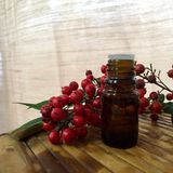 Aromatherapy oil bottle Stock Images