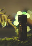 Aromatherapy oil - fresh fragrance Stock Photography