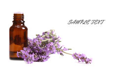 Aromatherapy oil and lavender. Flower isolated on white background Royalty Free Stock Photography