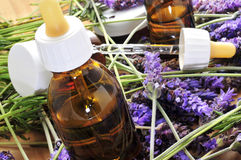 Aromatherapy oil. And lavender flowers Royalty Free Stock Images