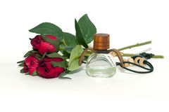 Aromatherapy oils Stock Photography