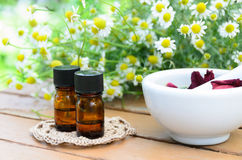 Aromatherapy oils for beauty treatment royalty free stock photo