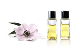 Aromatherapy Oils and Flower. A studio macro of aromatherapy oils and flower against white background. Copy space Stock Photo