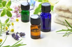 Aromatherapy oils with herbs Stock Photography