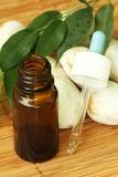 aromatherapy olja Royaltyfri Bild