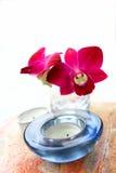 aromatherapy orchid γυαλιού κεριών vase Στοκ φωτογραφία με δικαίωμα ελεύθερης χρήσης