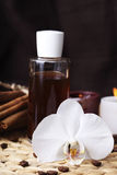Aromatherapy and organic oils Stock Photos