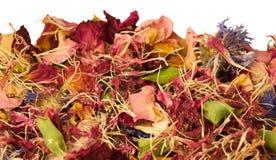 aromatherapy potpourri Стоковые Изображения
