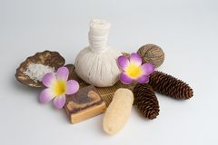 Aromatherapy  product  Spa set ,candle ,soap,coconut,flower,shel. L,  massage  with  white color   background Royalty Free Stock Images