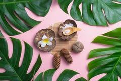 Aromatherapy produktu zdroju set, mieszkanie nieatutowy skład Tropikalny le Obrazy Royalty Free