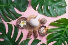Aromatherapy produktu zdroju set, mieszkanie nieatutowy skład Tropikalny le Fotografia Stock