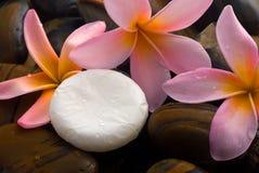 aromatherapy relaxation spa Στοκ Φωτογραφίες