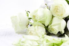 Aromatherapy with roses Royalty Free Stock Image