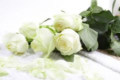 Aromatherapy with roses Stock Photography