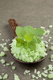 Aromatherapy salt spa. peppermint on green salt spa in wooden sp Stock Image