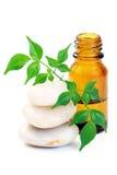 Aromatherapy Schmieröl Stockfoto